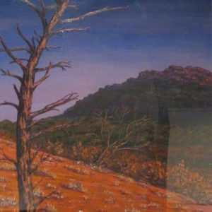 Late afternoon on Mt Aleck - $845