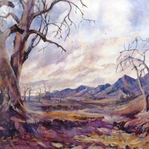 Southern Flinders Ranges - $2500